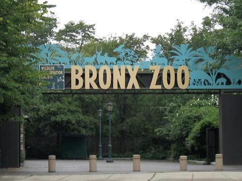El Zoologico del Bronx1