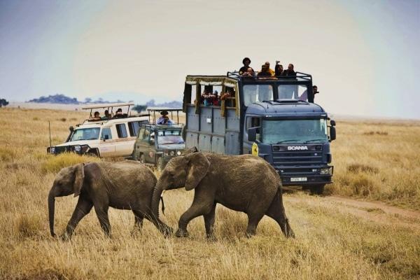ganar-viaje-safari-africa