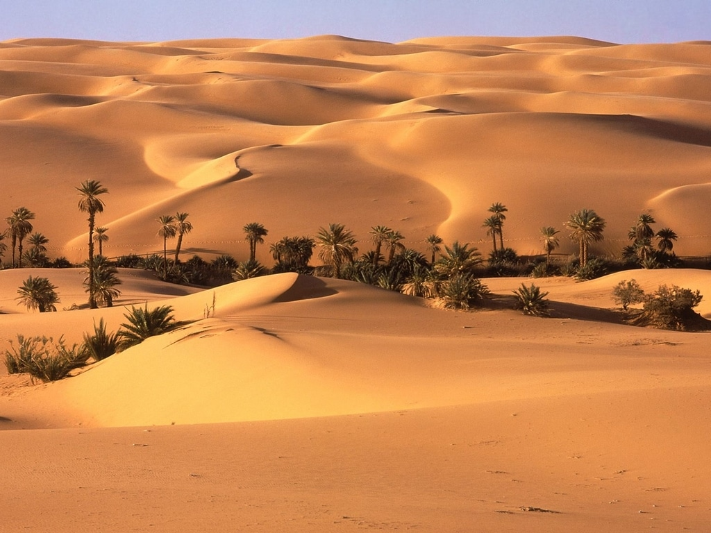 desiertos-0