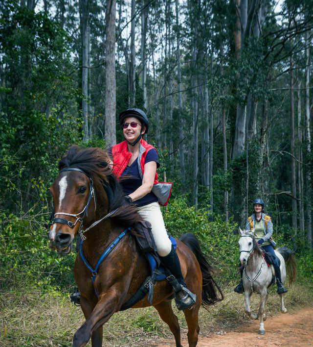 cabalgata-bosque