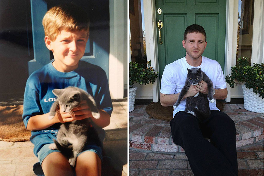 before-and-after-growing-up-cats-52__880