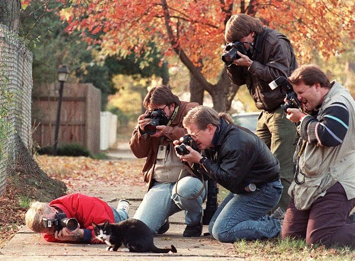 dedicated-photographers-14__700