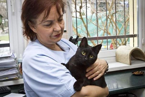 veterinary-nurse-cat-hugs-shelter-animals-radamenes-bydgoszcz-poland-2