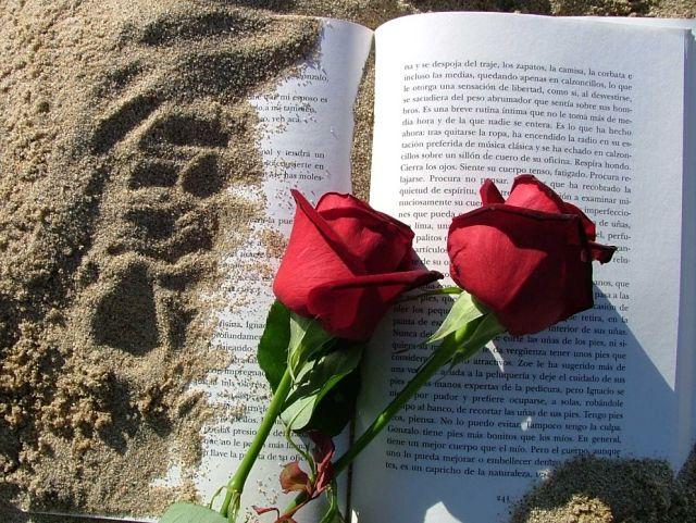 15 razones por las que deberías dejarlo todo y casarte con un catalán_opt (1)